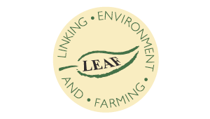 accreditation-leaf