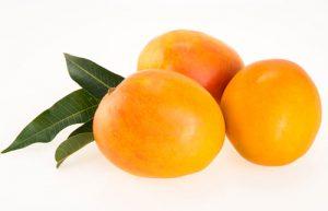 Mango Cultivars - Honey Gold