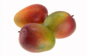 Mango Cultivars - Princess