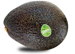 GEM avocado